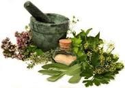 طب سنتی+گیاه درمانی+حجامت+زالودرمانی و…