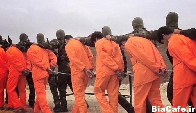 درس عبرت تروریست های جبهه الشامیه به داعش