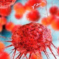 ۱۵ماده غذایی ضد سرطان/مواد غذایی که ضد سرطان هستند را بشناسید